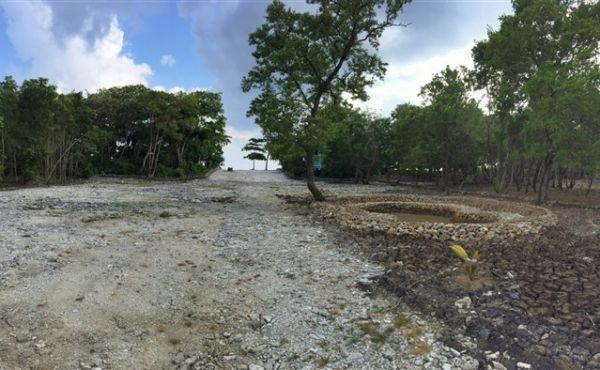 Large Lot with Beach Frontage at Little Bight