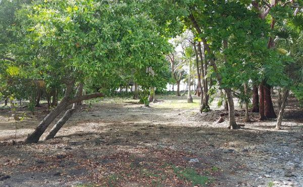 Ocean Front Lot With Boat Slip at Silver Garden