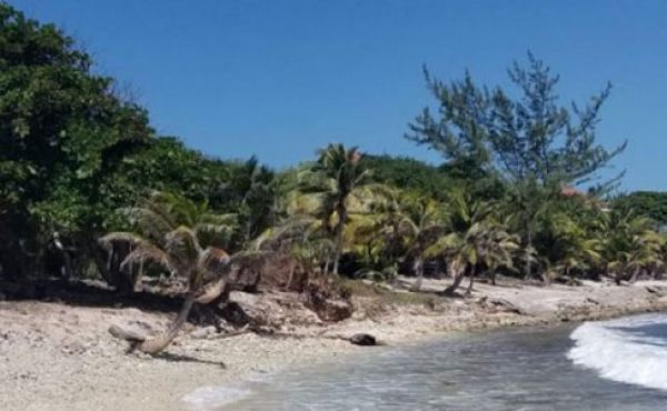 0.375 Acre Beachfront Lot at Silver Garden
